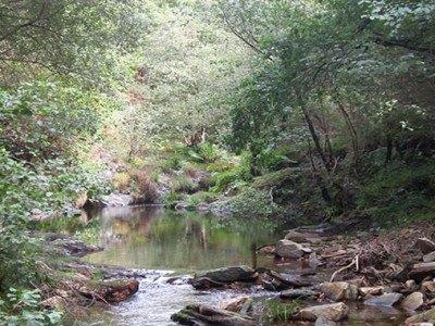 Val de Cambas (3)